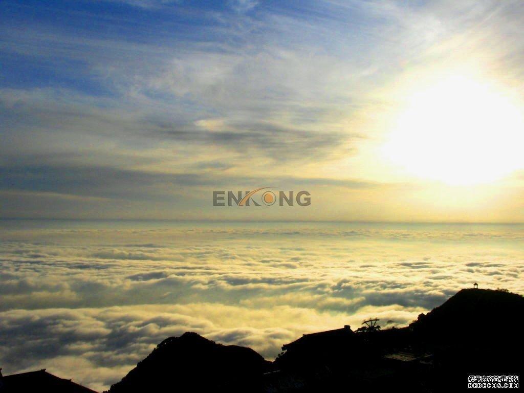 Enkong Array image12